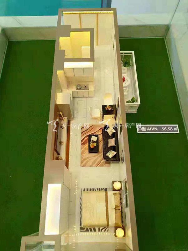 上都国际-Shangdu International1室1厅1卫建筑面积57㎡AIVN户型