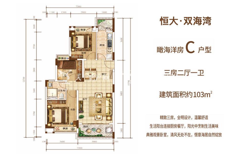 恒大双海湾瞰海洋房C户型 建筑面积约103平 三房两厅.jpg