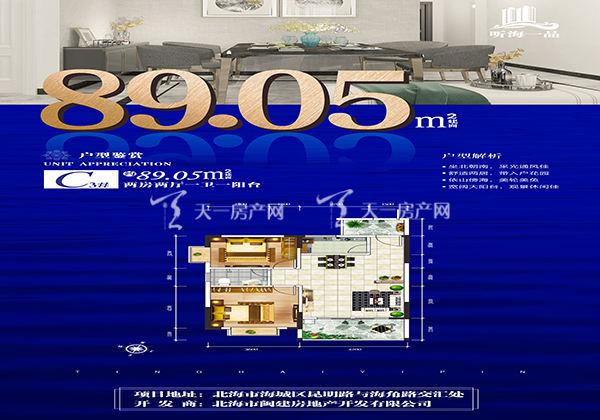 听海一品富贵轩C户型:2室2厅1卫1阳台  约89.05m²