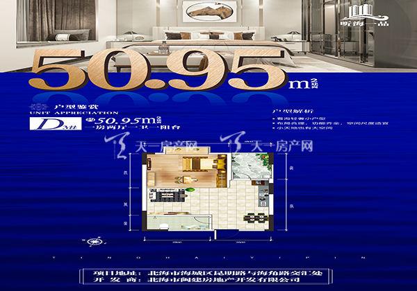 听海一品富贵轩D户型:1室2厅1卫1阳台  约50.95m²