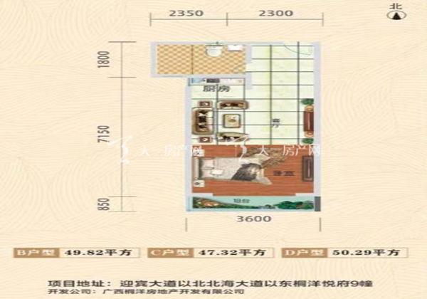 桐洋和悦府B/C/D户型:1室1厅1卫1厨 建面:47.32-50.29㎡