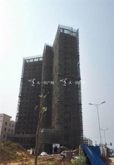 海州广场工程进度21 (3).jpg