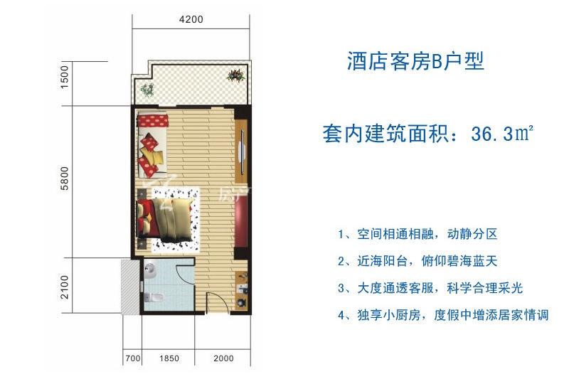 博鳌滨海小镇 酒店客房B户型-1房1厅1厨1卫36.3㎡.jpg