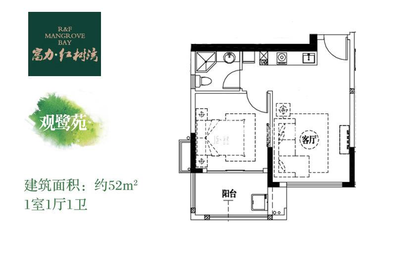 富力红树湾 覌鹭苑1房1厅52㎡.jpg