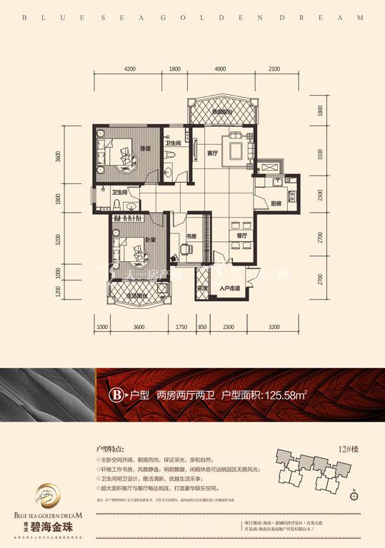 碧海金珠户型单张-12#楼B户型125.58㎡