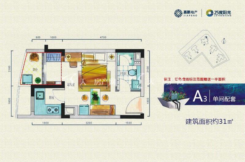 25度阳光 A3单间户型 1房1厅1厨1卫31㎡.jpg