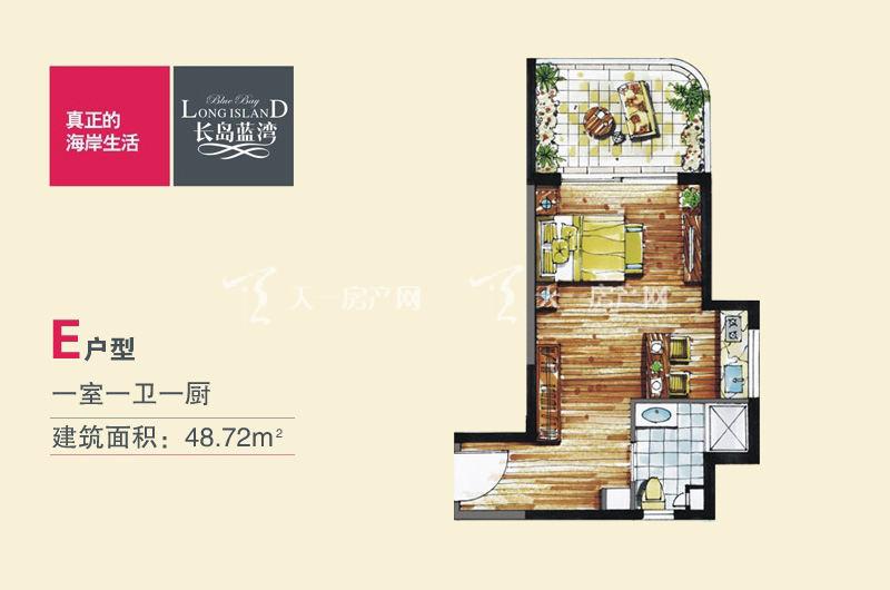 长岛蓝湾E户型-1房1卫1厨-48.72㎡.jpg