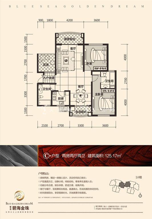 碧海金珠户型单张-1#楼C户型125.17㎡