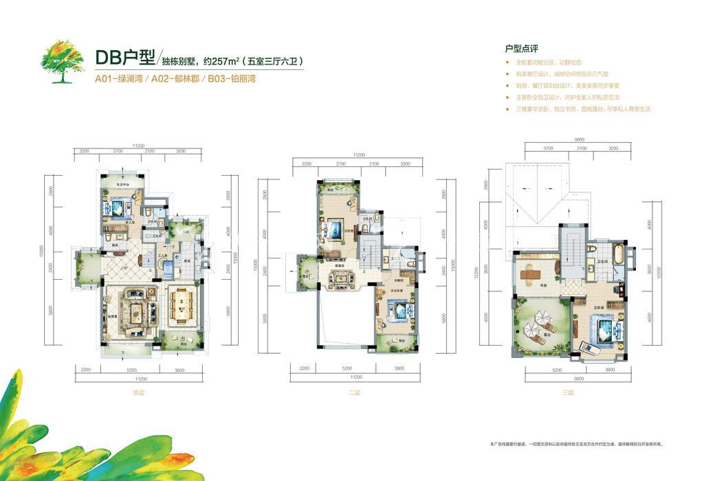 富力红树湾 富力红树湾0129独栋别墅户型DB户型257㎡五室三厅六卫