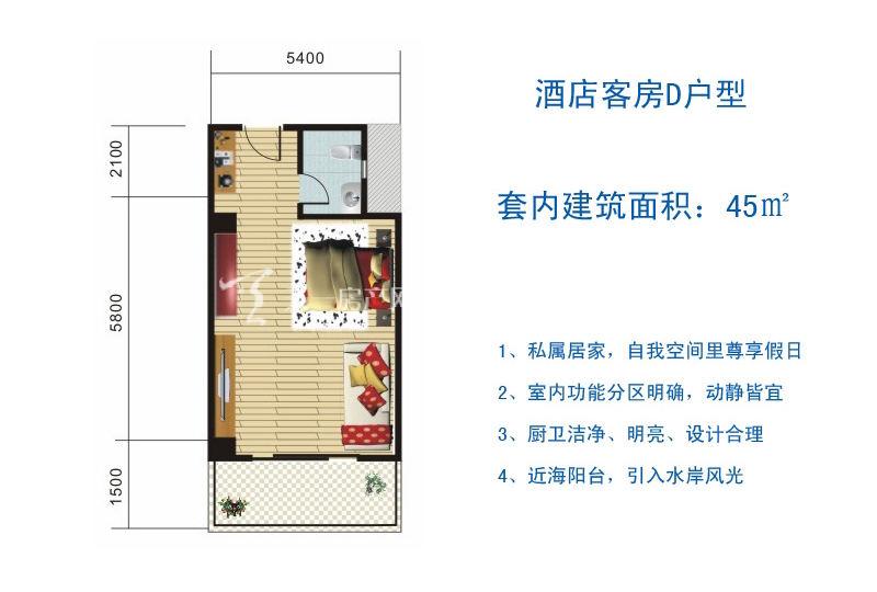 博鳌滨海小镇 酒店客房D户型-1房1厅1厨1卫45㎡.jpg