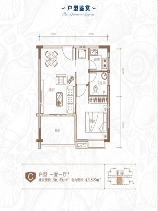 衍宏海港小镇 C户型1室1厅1卫56.45㎡.jpg