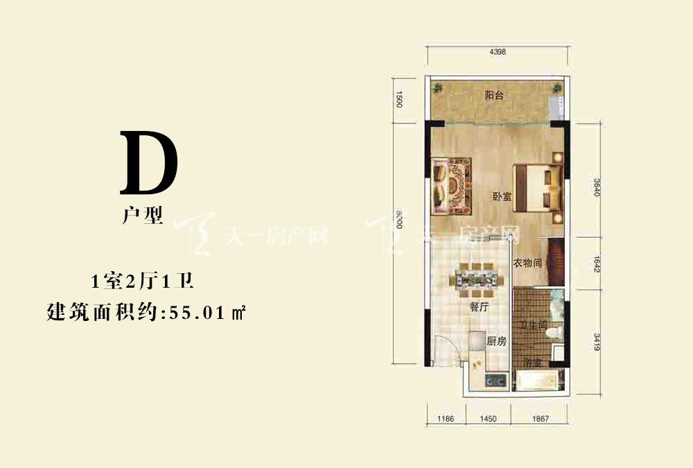 伊比亚天逸 D户型1室2厅1卫55.01㎡.jpg