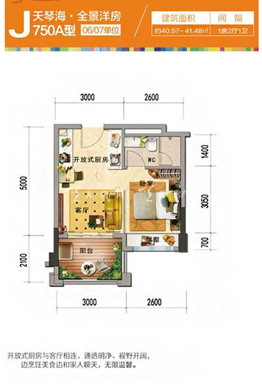 碧桂园珊瑚宫殿天琴海J750A-1房2厅1厨1卫-40.57㎡.jpg